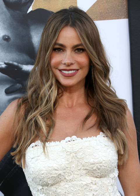 Sofia Vergara's Ash Blonde Hair