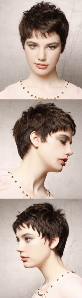 Dark Brunette Short Layered Pixie