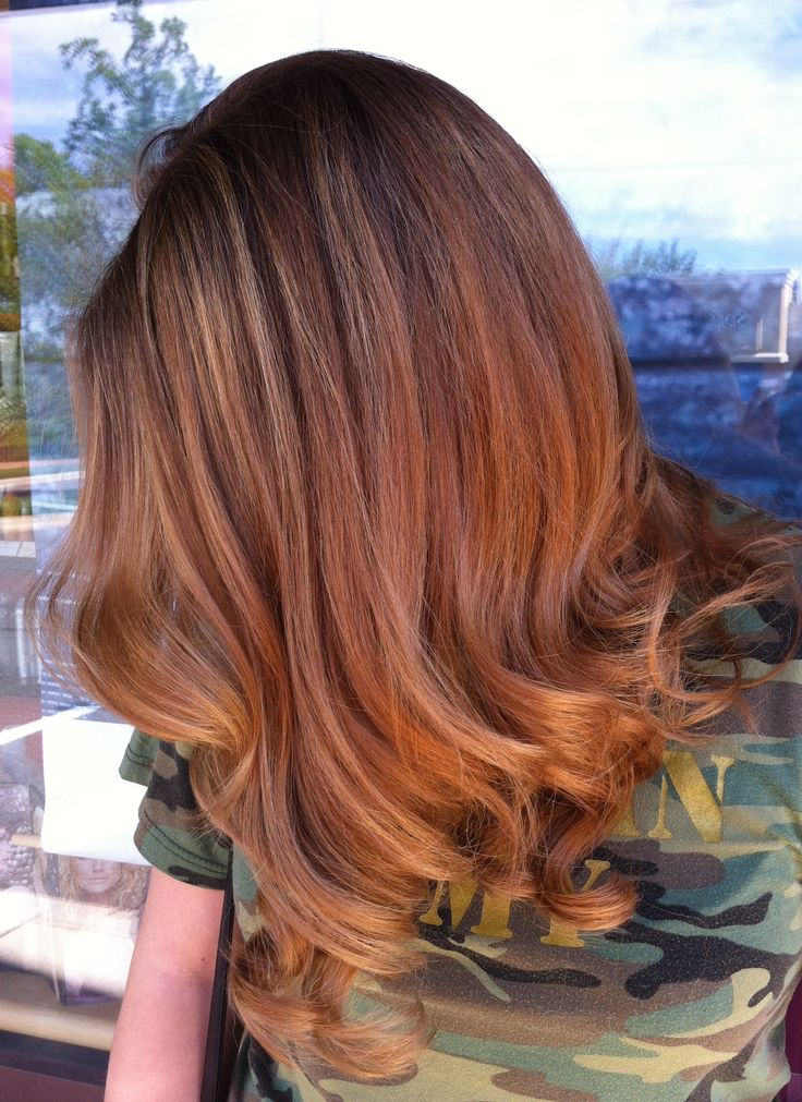 Chestnut Highlights