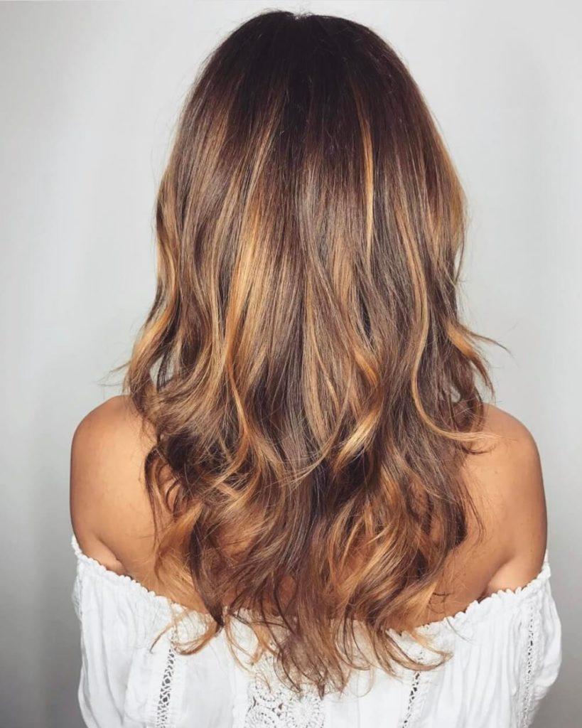 Brown Hair Color